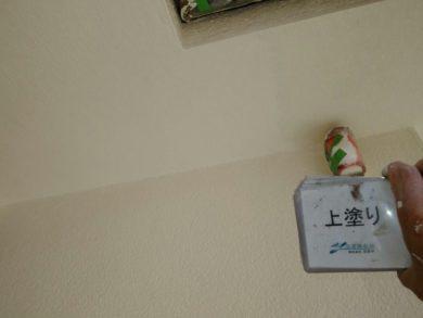 大阪・南河内郡太子町T様 外壁塗装 上塗り